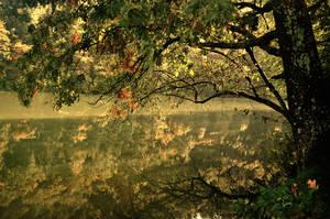 autumn lake by torobala