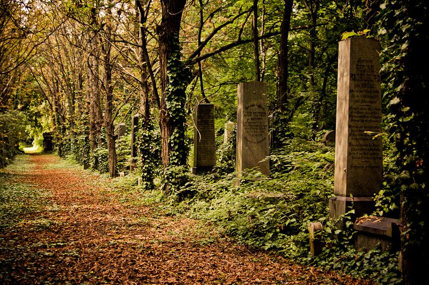 forgotten cemetery IX by torobala