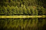 mirror-lake I
