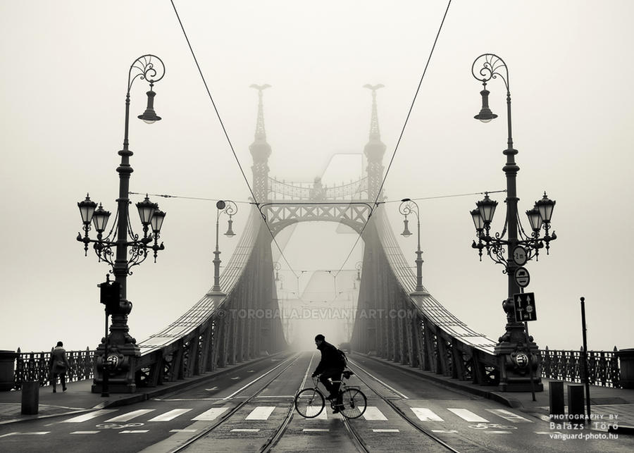 On a foggy day by torobala