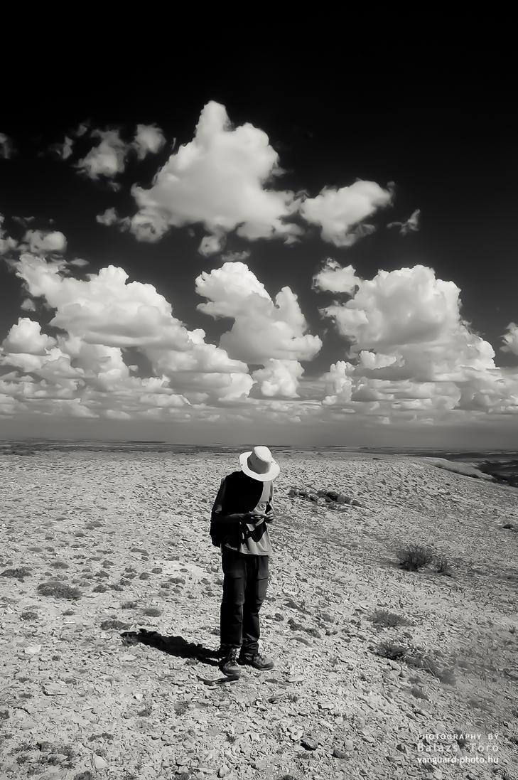 Solitary Life by torobala