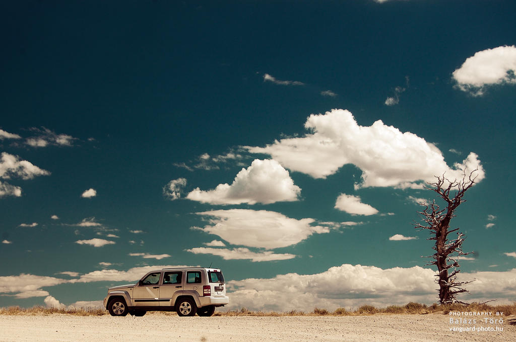 Car On The Edge by torobala