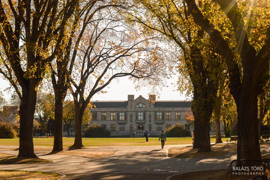 Autumn At The University by torobala