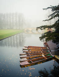 Foggy Morning In Cambridge I by torobala
