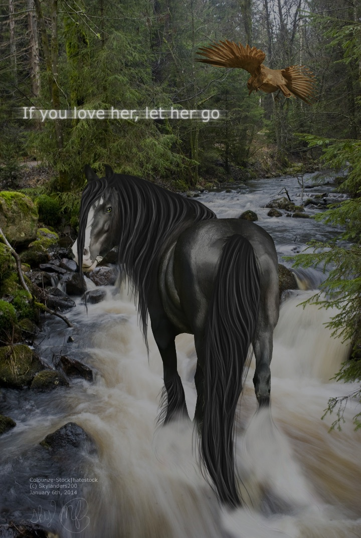 Order|If you love her by makian-feathers