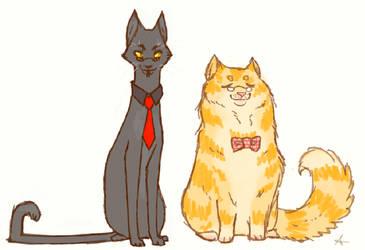Cat omens by Sammaella
