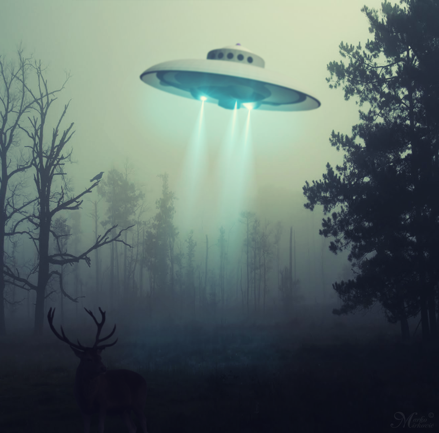 the flying saucer Flying saucer definition is - any of various unidentified flying objects usually described as being saucer-shaped or disk-shaped any of various unidentified flying objects usually described as being saucer-shaped or disk-shaped.