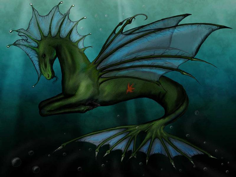 Criatura: Hipocampus Hippocampus_by_Sedeptra