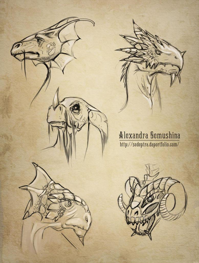 Dragons - scketches by Sedeptra