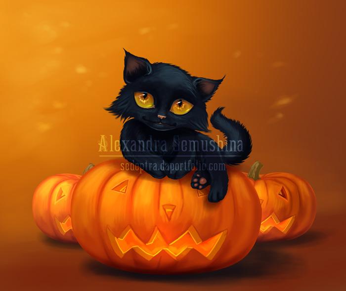Halloween cat by Sedeptra on DeviantArt