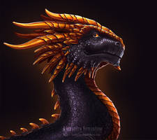 Black Dragon by Sedeptra