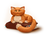 Wise red cat
