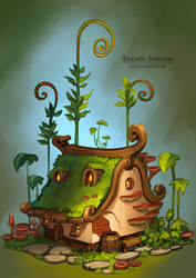 Tiny house by Sedeptra