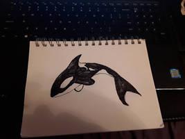 Inktober Orca