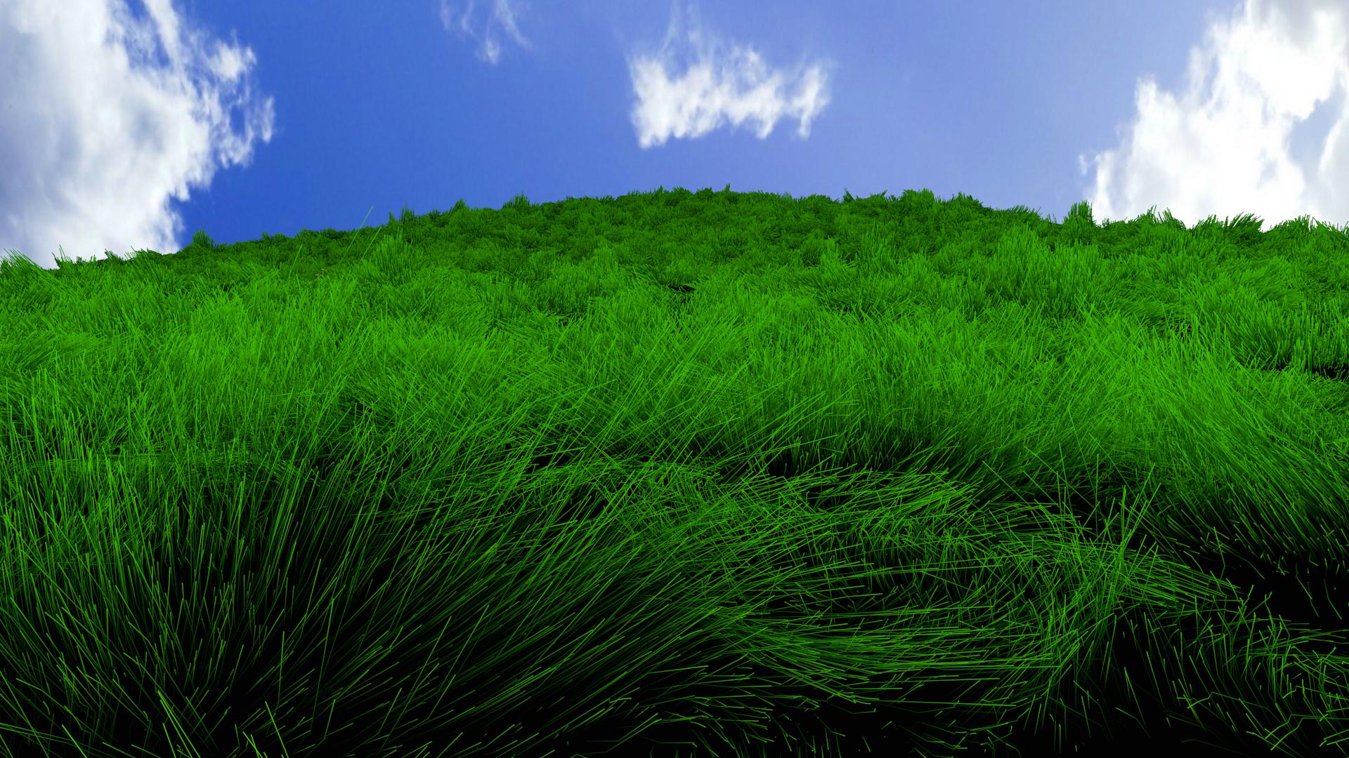 grass desktop backgrou...