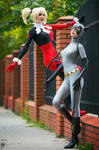 Classic Harley Quinn and Catwoman