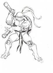 Michelangelo by TeeMinus