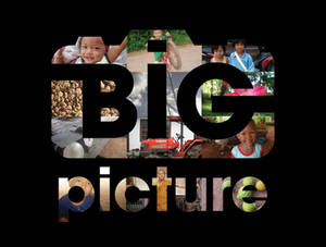 The Big Picture Project