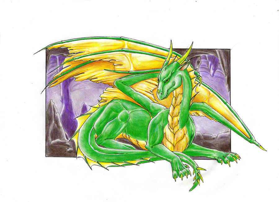 My first dragon by Navarose