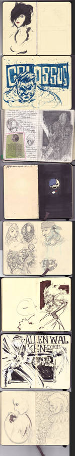 Various Moleskine Pages