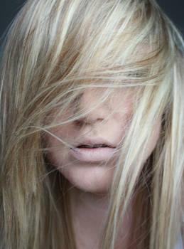 create-stock: hair ii