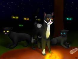 Warrior Cats- Fire and ice- prologe by AlbaBelen