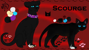 Scourge Reference Sheet by AlbaBelen