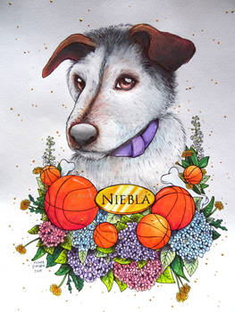 Niebla - Commission for a friend