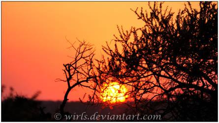Pilanesberg Sunset 2