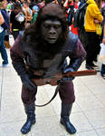 A Gorilla soldier from Planet of The Apes