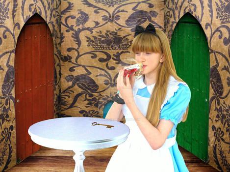 Alice in the hall of doors