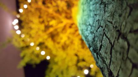 Rainbow-lit Tree