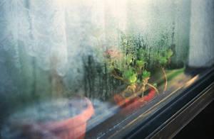 autumn window. by BlackDennie