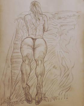 Sepia drawing.