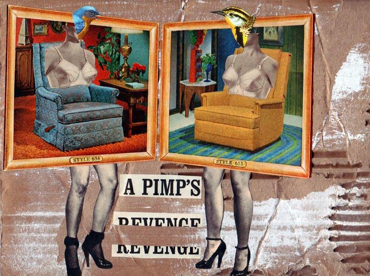 a pimps revenge by somavenus