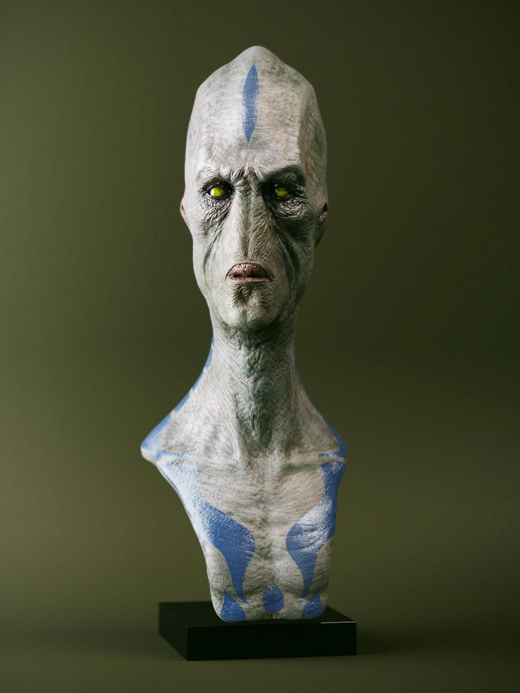 Calaracian bust by loden