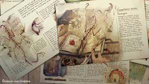 Sanguicharta medeis - Bookwyrm