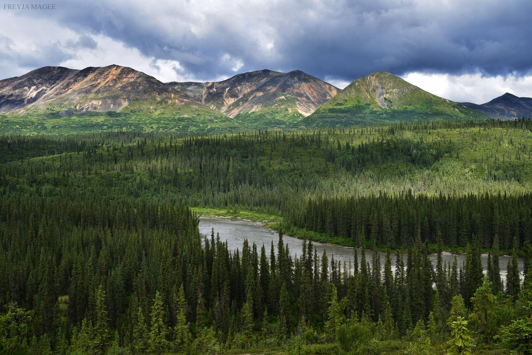 nenana chat Live chat fine homes  nenana real estate agents these real estate agents can help you through your real estate process in nenana and provide you with local insights.
