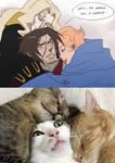 Catslvania