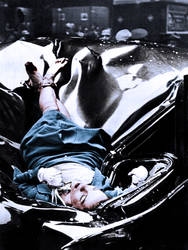 Evelyn McHale 351 by ajax1946