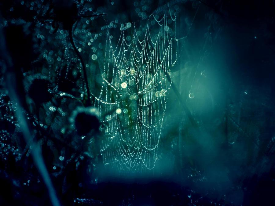 DarkWeb by solopv