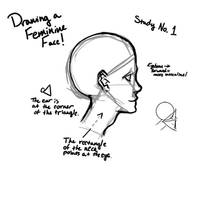 How to Draw a Feminine Face [ArtStudyNo.1] by shashamango