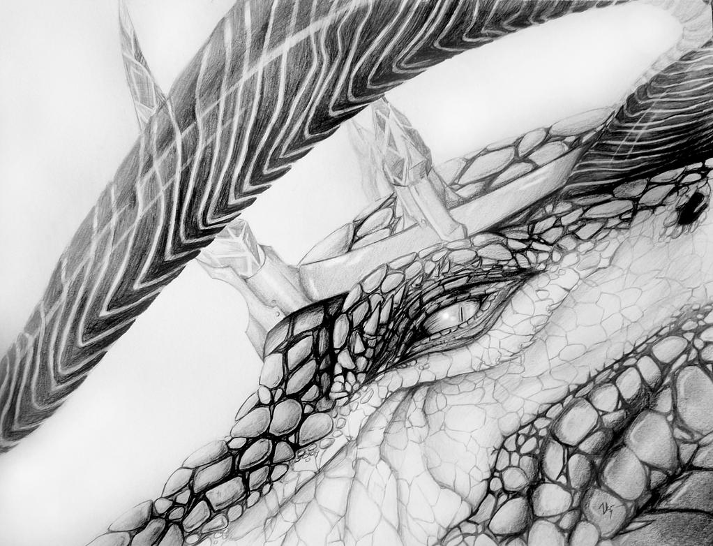 King of Dragons by Visoris