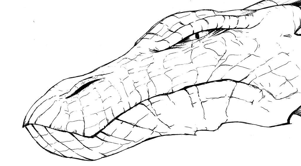 dragon head outline by comicstumps - Dragon Outline