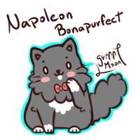 Napoleon Bonapurfect
