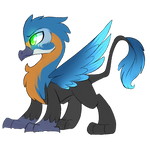 Kingfisher MLP griffon adopt auction :CLOSED: