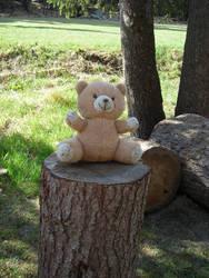 Teddy Bear by natyna82
