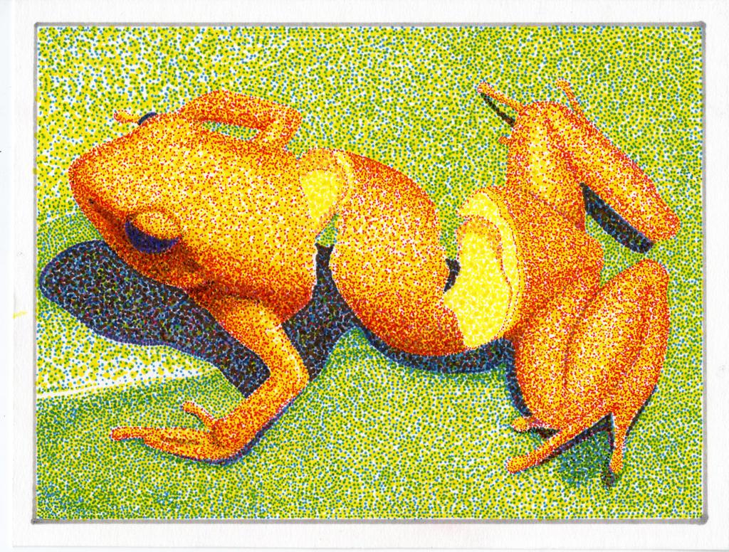 mussett pointillism orange peel frog remake by peppered oni on