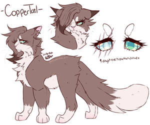 Coppertail's Ref