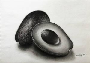 Avocado Pencil Drawing